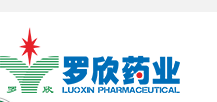 Shandong luoxin pharmaceutical group co. LTD